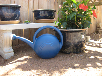 Watering can for backyard garden
