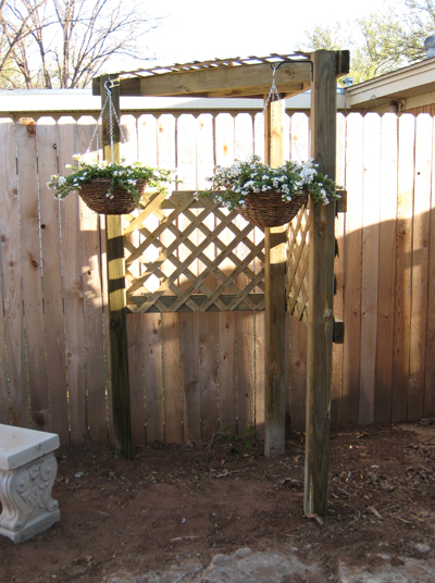 Completed Grape Arbor